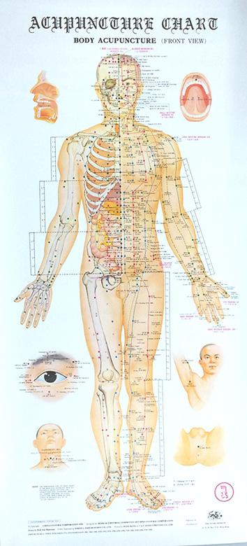 Akupunktiojulisteet 4 kpl