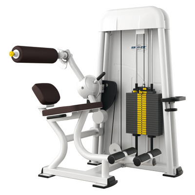 Ergo-Fit Back Extension 4000, medical