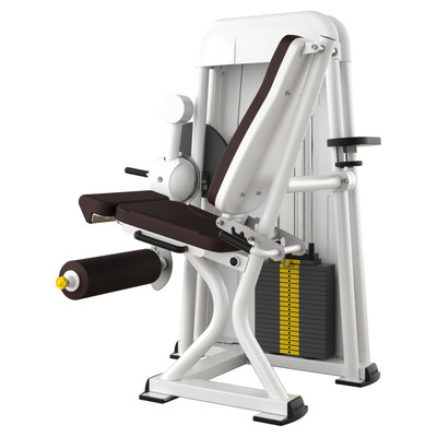 Ergo-Fit Leg Extension 4000 medical