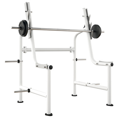 Ergo-Fit Squat Rack 4000