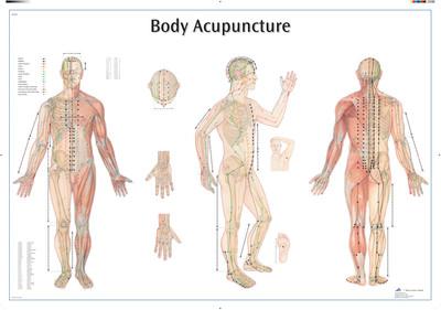 Akupunktio ohjetaulu