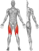 Ergo-Fit Leg Extension 4000 medical