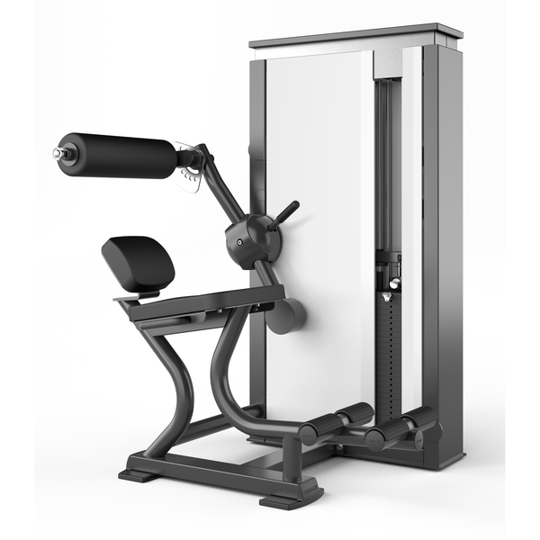 Ergo-Fit Vector, Back Ext Medical